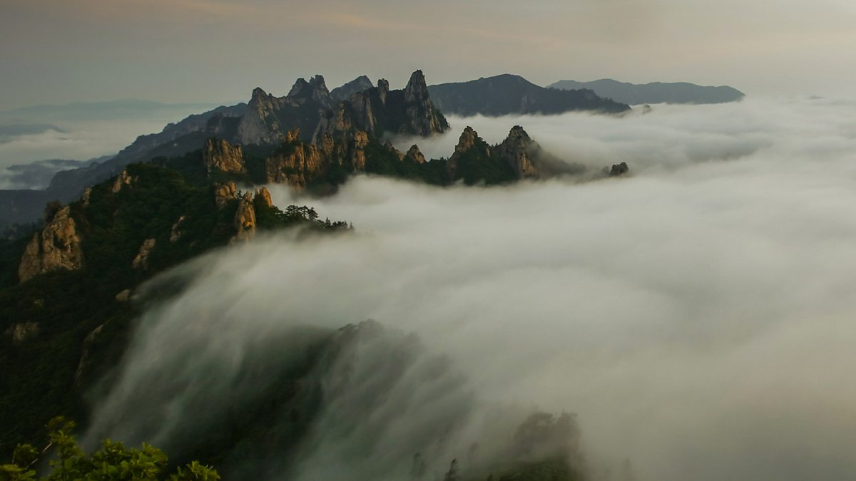 BBC  South Korea, Earth's Hidden Wilderness 720p MP4 + subs BigJ0554
